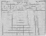 Konskripcijske tabele 1830 - 1857<br />Ljubljana<br />Mesto 175<br />Conscription of the population 1830 - 1857