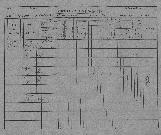 Konskripcijske tabele 1830 - 1857<br />Ljubljana<br />Karlovško predmestje 23<br />Conscription of the population 1830 - 1857