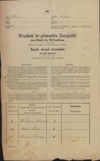 Popis prebivalstva 31. 12. 1869<br />Ljubljana<br />Mesto 11<br />Population census 31 December 1869