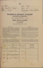 Popis prebivalstva 31. 12. 1869<br />Ljubljana<br />Mesto 17<br />Population census 31 December 1869