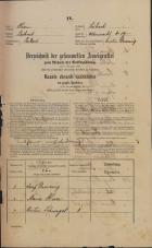 Popis prebivalstva 31. 12. 1869<br />Ljubljana<br />Mesto 19<br />Population census 31 December 1869