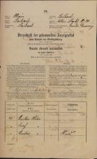 Popis prebivalstva 31. 12. 1869<br />Ljubljana<br />Mesto 20<br />Population census 31 December 1869