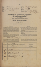 Popis prebivalstva 31. 12. 1869<br />Ljubljana<br />Mesto 22<br />Population census 31 December 1869