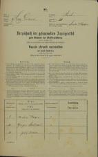 Popis prebivalstva 31. 12. 1869<br />Ljubljana<br />Mesto 51<br />Population census 31 December 1869