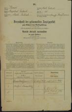 Popis prebivalstva 31. 12. 1869<br />Ljubljana<br />Mesto 58<br />Population census 31 December 1869