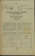 Popis prebivalstva 31. 12. 1869<br />Ljubljana<br />Mesto 60<br />Population census 31 December 1869