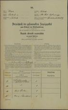 Popis prebivalstva 31. 12. 1869<br />Ljubljana<br />Mesto 63<br />Population census 31 December 1869