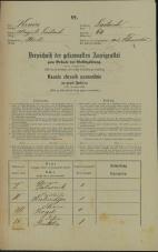 Popis prebivalstva 31. 12. 1869<br />Ljubljana<br />Mesto 64<br />Population census 31 December 1869