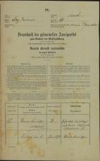 Popis prebivalstva 31. 12. 1869<br />Ljubljana<br />Mesto 67<br />Population census 31 December 1869