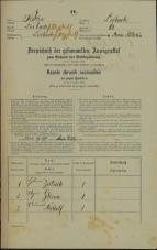 Popis prebivalstva 31. 12. 1869<br />Ljubljana<br />Mesto 68<br />Population census 31 December 1869