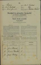 Popis prebivalstva 31. 12. 1869<br />Ljubljana<br />Mesto 69<br />Population census 31 December 1869
