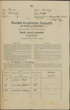 Popis prebivalstva 31. 12. 1869<br />Ljubljana<br />Mesto 90<br />Population census 31 December 1869