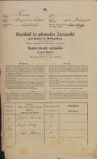 Popis prebivalstva 31. 12. 1869<br />Ljubljana<br />Mesto 100<br />Population census 31 December 1869