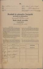 Popis prebivalstva 31. 12. 1869<br />Ljubljana<br />Mesto 103<br />Population census 31 December 1869