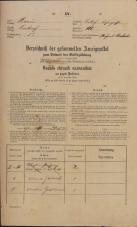 Popis prebivalstva 31. 12. 1869<br />Ljubljana<br />Mesto 105<br />Population census 31 December 1869