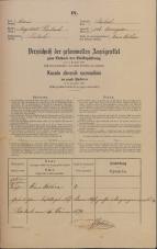 Popis prebivalstva 31. 12. 1869<br />Ljubljana<br />Mesto 106<br />Population census 31 December 1869
