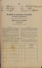 Popis prebivalstva 31. 12. 1869<br />Ljubljana<br />Mesto 107<br />Population census 31 December 1869