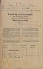 Popis prebivalstva 31. 12. 1869<br />Ljubljana<br />Mesto 111<br />Population census 31 December 1869