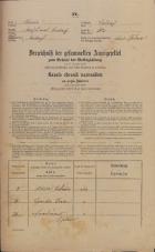Popis prebivalstva 31. 12. 1869<br />Ljubljana<br />Mesto 112<br />Population census 31 December 1869