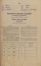 Popis prebivalstva 31. 12. 1869<br />Ljubljana<br />Mesto 114<br />Population census 31 December 1869