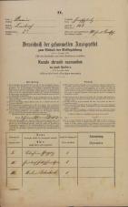Popis prebivalstva 31. 12. 1869<br />Ljubljana<br />Mesto 118<br />Population census 31 December 1869
