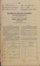 Popis prebivalstva 31. 12. 1869<br />Ljubljana<br />Mesto 119<br />Population census 31 December 1869