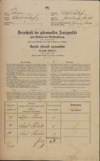 Popis prebivalstva 31. 12. 1869<br />Ljubljana<br />Mesto 95<br />Population census 31 December 1869