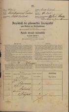 Popis prebivalstva 31. 12. 1869<br />Ljubljana<br />Mesto 96<br />Population census 31 December 1869