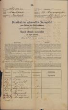 Popis prebivalstva 31. 12. 1869<br />Ljubljana<br />Mesto 99<br />Population census 31 December 1869