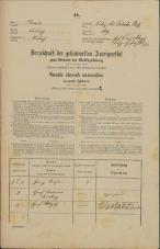 Popis prebivalstva 31. 12. 1869<br />Ljubljana<br />Mesto 149<br />Population census 31 December 1869
