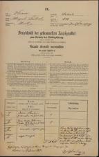 Popis prebivalstva 31. 12. 1869<br />Ljubljana<br />Mesto 202<br />Population census 31 December 1869