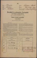 Popis prebivalstva 31. 12. 1869<br />Ljubljana<br />Mesto 203<br />Population census 31 December 1869