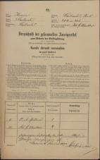 Popis prebivalstva 31. 12. 1869<br />Ljubljana<br />Mesto 205<br />Population census 31 December 1869