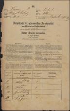 Popis prebivalstva 31. 12. 1869<br />Ljubljana<br />Mesto 206<br />Population census 31 December 1869