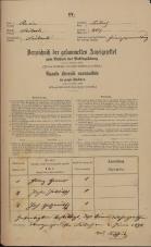 Popis prebivalstva 31. 12. 1869<br />Ljubljana<br />Mesto 207<br />Population census 31 December 1869