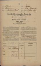 Popis prebivalstva 31. 12. 1869<br />Ljubljana<br />Mesto 210<br />Population census 31 December 1869
