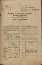 Popis prebivalstva 31. 12. 1869<br />Ljubljana<br />Mesto 217<br />Population census 31 December 1869