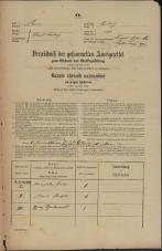 Popis prebivalstva 31. 12. 1869<br />Ljubljana<br />Mesto 220<br />Population census 31 December 1869