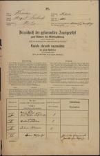 Popis prebivalstva 31. 12. 1869<br />Ljubljana<br />Mesto 221<br />Population census 31 December 1869