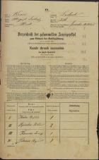 Popis prebivalstva 31. 12. 1869<br />Ljubljana<br />Mesto 226<br />Population census 31 December 1869