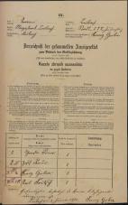 Popis prebivalstva 31. 12. 1869<br />Ljubljana<br />Mesto 227<br />Population census 31 December 1869