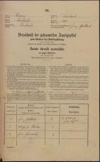 Popis prebivalstva 31. 12. 1869<br />Ljubljana<br />Mesto 231<br />Population census 31 December 1869