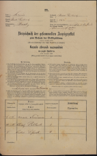 Popis prebivalstva 31. 12. 1869<br />Ljubljana<br />Mesto 232<br />Population census 31 December 1869