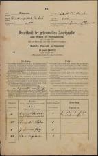 Popis prebivalstva 31. 12. 1869<br />Ljubljana<br />Mesto 234<br />Population census 31 December 1869