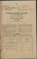 Popis prebivalstva 31. 12. 1869<br />Ljubljana<br />Mesto 238<br />Population census 31 December 1869