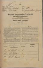 Popis prebivalstva 31. 12. 1869<br />Ljubljana<br />Mesto 239<br />Population census 31 December 1869