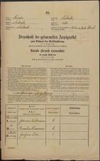 Popis prebivalstva 31. 12. 1869<br />Ljubljana<br />Mesto 251<br />Population census 31 December 1869