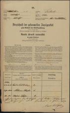 Popis prebivalstva 31. 12. 1869<br />Ljubljana<br />Mesto 252<br />Population census 31 December 1869
