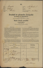 Popis prebivalstva 31. 12. 1869<br />Ljubljana<br />Mesto 254<br />Population census 31 December 1869
