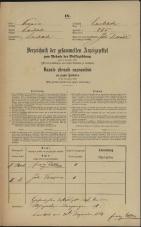 Popis prebivalstva 31. 12. 1869<br />Ljubljana<br />Mesto 255<br />Population census 31 December 1869